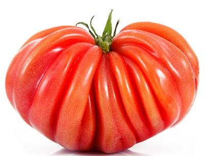 La tomate et la coeur de boeuf l 39 antre de glacas - Planter des tomates coeur de boeuf ...